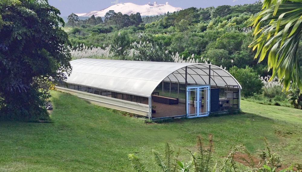greenhouse2.jpg